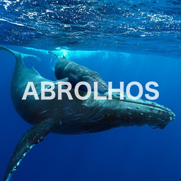 1-Abrolhos